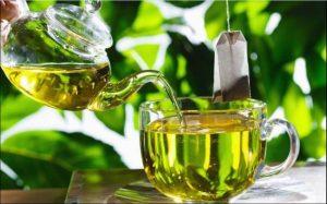 Grüner Tee hilft im Kampf gegen antibiotikaresistente Bakterien